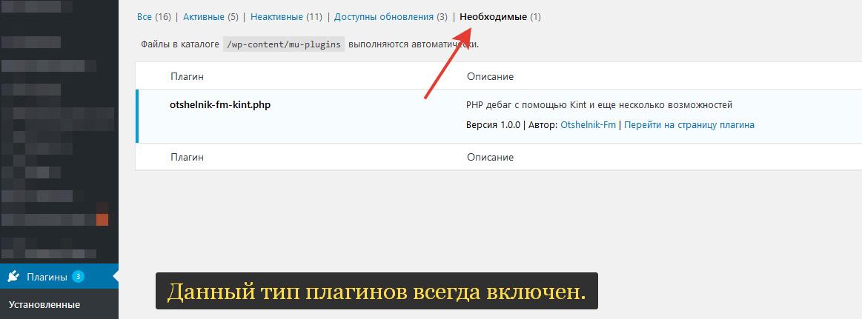Вид плагина в админ панели сайта на странице плагинов