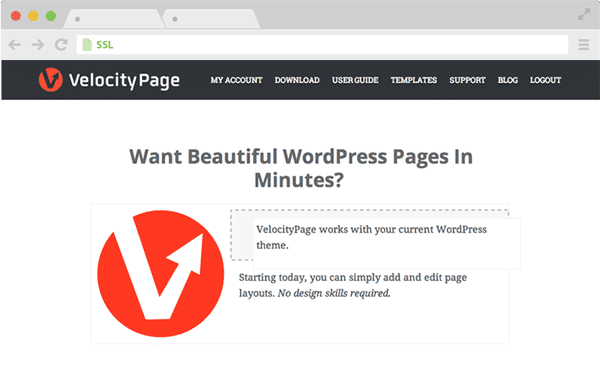 Guide to Velocity Page