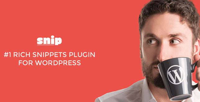 богатый фрагмент WordPress плагин