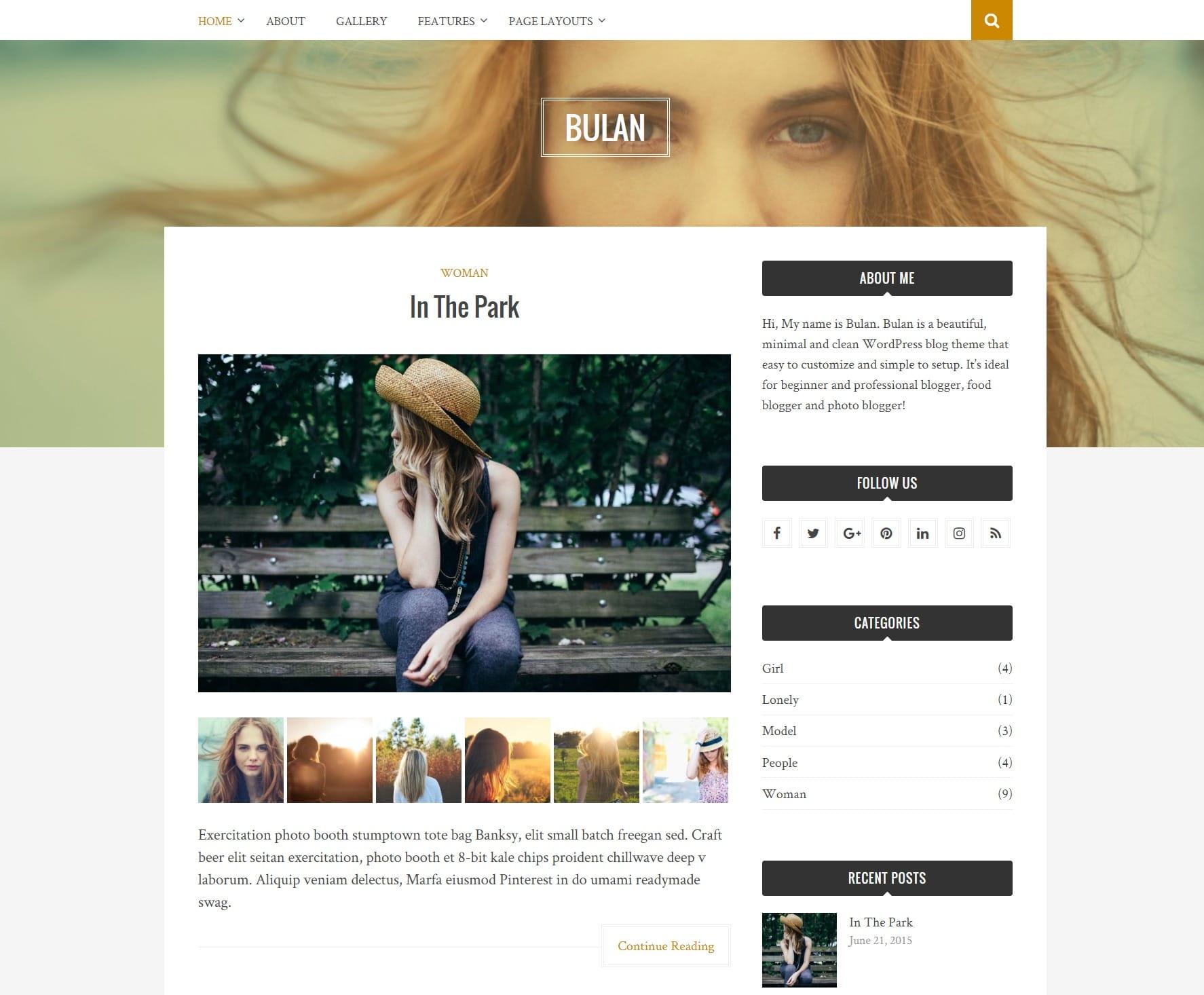 Булан стиль жизни WordPress тема