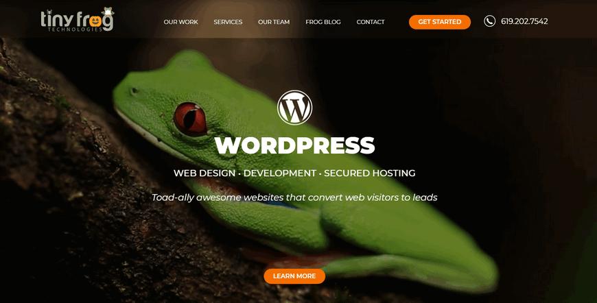 16 лучших компаний-разработчиков WordPress в США