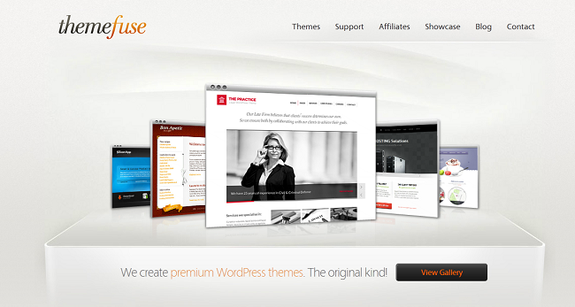 Интервью в магазине тем WordPress ThemeFuse